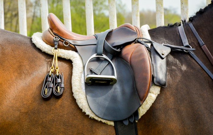 CWD or Antares ? You'll have to choose !